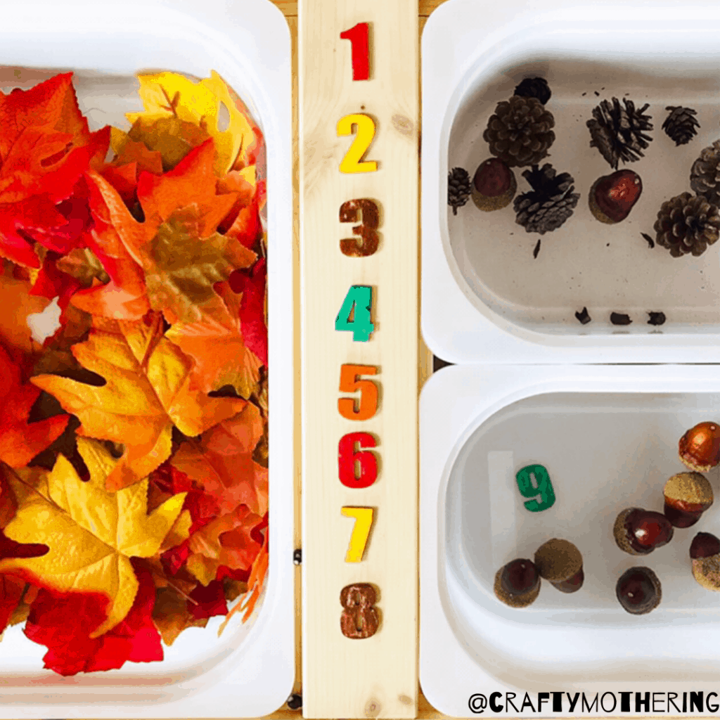 autumn sensory bin counting practice